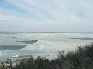 La Nautique et l'Etang de Bages sous les glaces P1040470-300x225